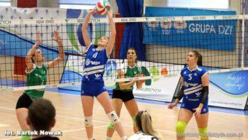 Siatkówka: Chełmiec za wysoki dla Volleya [WIDEO]